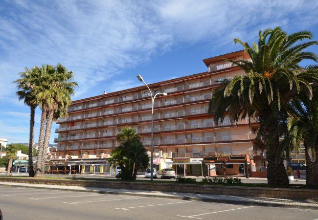 Apartment in Rosas / Roses - IRAR04-APARTAMENTO JUNTO A LA PLAYA